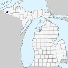 Carduus crispus - Michigan Flora