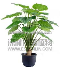 artificial rubber plant artificial rubber plant suppliers and manufacturers at alibabacom cheap office plants