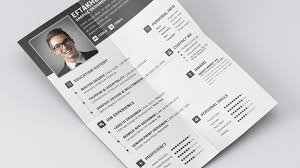 free cv  resume professional timeless templates    free psd    fre resume template