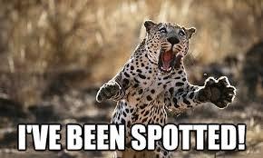 Memes Comix Funny Pix via Relatably.com