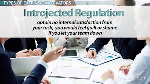 extrinsic motivation in the workplace factors types examples extrinsic motivation in the workplace factors types examples video lesson transcript com