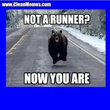 Funny Clean Memes 2015 - funny memes Meme Bibliothek via Relatably.com