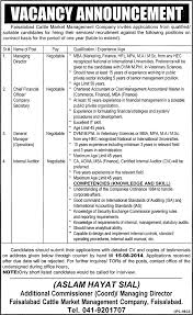 company secretary job faisalabad catle market management company company secretary job faisalabad catle market management company job managing director chief financial officer general manager internal auditor