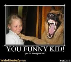 Terrified Kid = Hysterical Dog Meme Generator - Captionator ... via Relatably.com