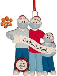Pandemic Family with TP Banner - 3 - Christmas ... - Amazon.com