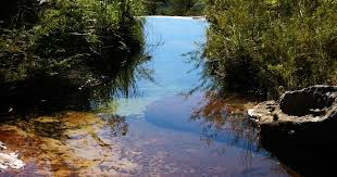<b>Watermelon Flat</b>. Fenced Open Grass, Waterfalls & More, NSW: 4 ...