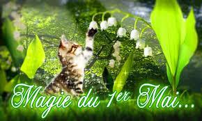 """Résultat de recherche d'images pour """"brin de muguet du 1er mai"""""""
