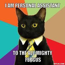 DIYLOL - I am Personal Assistant To the all-mighty Fergus via Relatably.com