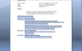 online guide to writing a cv online guide to writing a cv