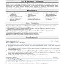 food and beverage sales resume   sales   sales   lewesmrsample resume  food and beverage sales resume pic