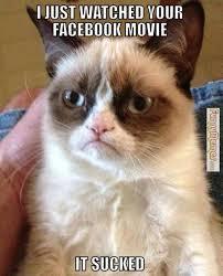 FunnyMemes.com • Cat memes - Grumpy cat Facebook movie via Relatably.com