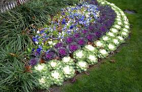 Small Picture Contemporary Flower Garden Ideas Full Sun For L In Design Inspiration