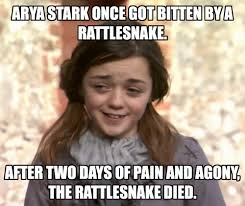 arya stark memes | Tumblr via Relatably.com