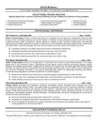 credit analyst resume example resumes pinterest resume and credit analyst budget analyst resume sample