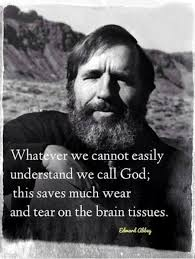 Love Edward Abbey Quotes. QuotesGram via Relatably.com