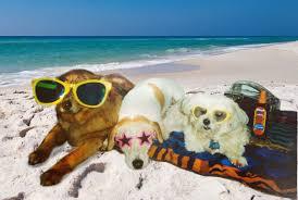 Mήπως είναι καιρός για παραλία;