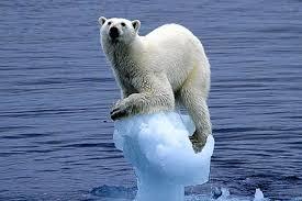 essay on global warming in hindi language essay essay on global warming in hindi zip