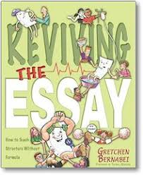 writingfixa teacher made lesson inspired by quotreviving the essay  a revised explanation of a game