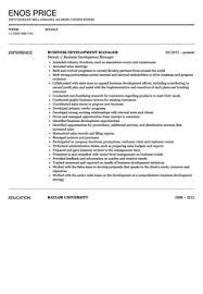 business development manager resume sample   velvet jobsbusiness development manager resume sample