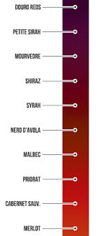 color meter full bodied red wine authentic oak red wine