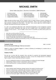 resume template s create professional in 93 enchanting professional resume templates template
