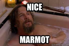 Nice marmot - Misc - quickmeme via Relatably.com