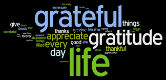 Image result for images of gratitude