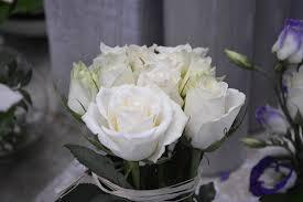 В каких случаях <b>дарят</b> белые розы | Flowwow