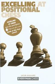 excelling at positional chess everyman chess jacob aagaard excelling at positional chess everyman chess jacob aagaard 9781857443257 com books