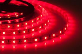 <b>Лента светодиодная ELF</b> 300SMD диодов (2835), 12В, 5м ...