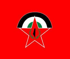 Demokratische Front zur Befreiung Palästinas