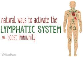 Activating the <b>Lymphatic System</b> to <b>Boost</b> Immunity | Wellness Mama
