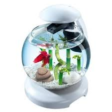 <b>Tetra Cascade</b> Globe White <b>комплекс аквариумный</b> белый - 6,8 л