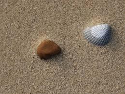 Resultado de imagem para grãos de areia ampliados