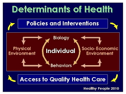 essay on health care reform  essay on health care reform  determinants personal responsibility and health system outcomes