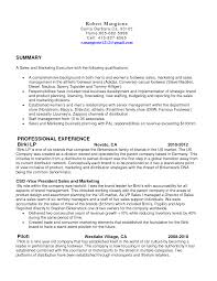 resume description for retail s resume examples retail s contract sample party proposal real estate s associate resumes template volumetrics