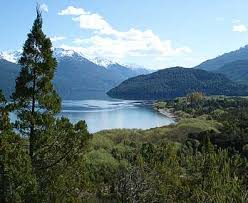 Bosque Andino Patagonico: Images?q=tbn:ANd9GcTfWABIMElGTYcEpJpqEx5K7UcB0A5wBrK9LKQmyfZ74M7Mu4peMQ