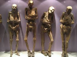 Image result for mummified corpse
