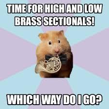 hornist hamster   Tumblr via Relatably.com