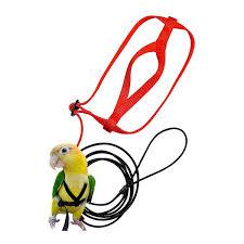 2019 <b>Pet Bird Harness</b> And <b>Leash</b>,<b>Adjustable Parrot Bird Harness</b> ...