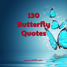 130 <b>Butterfly Quotes</b> and Sayings