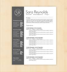 resume design templates profile experience professional skills resume design templates profile experience professional skills technical