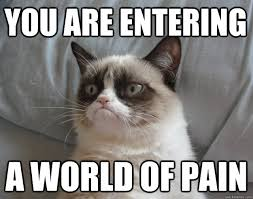 grumpy cat lebowski world pain memes | quickmeme via Relatably.com