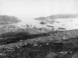 「Port Arthur Massacre, 1894」の画像検索結果
