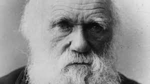 Charles Darwin - A Proven Science Fraudster?... | Conspiracy ...