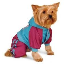 Купить <b>комбинезоны для собак</b> в интернет-магазине Lookbuck