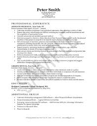 resume example exsa  jpginsurance agent resume example