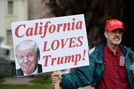 Image result for berkeley trump protest