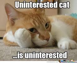 Uninterested Car Is Uninterested by mrmoeem - Meme Center via Relatably.com