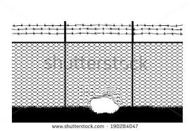 Barbed Wire Fence  F
